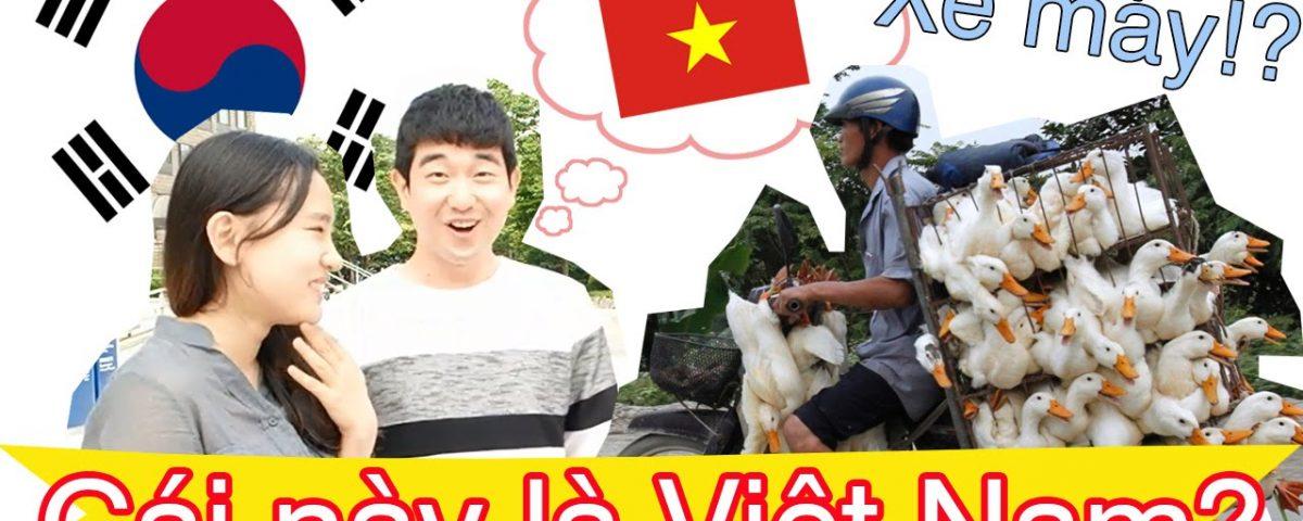 Người Hàn Quốc thích gì ở Việt Nam?