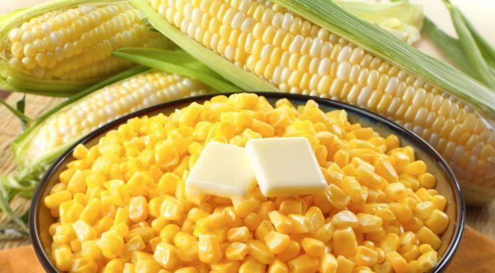 Những loại thực phẩm bổ dưỡng cho não