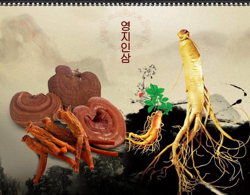 Trà sâm linh chi Hàn Quốc được kết hợp từ nhân sâm nguyên chất và linh chi